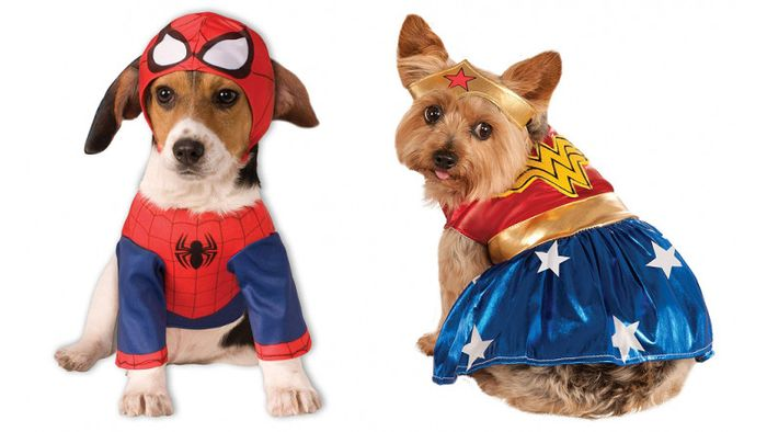 Cheap Dog Clothing & Costumes Clearance: Now from £3 at Pets at Home