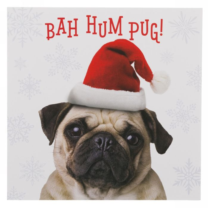WHSmith Bah Hum Pug Christmas Cards (Pack of 10) - 99p - Free C&C