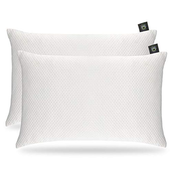 Pillow Protector Case 2 Pack with Zip Closure