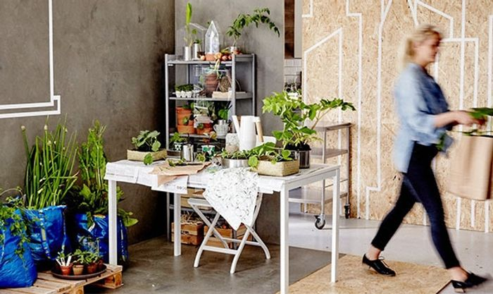 Apply for IKEA Live Lagom Community and Get £100 worth of IKEA Products