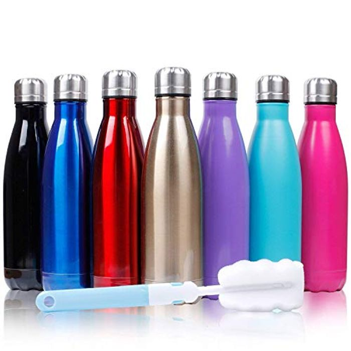 Lightning Deal 17oz Insulated Stainless Steel Water Bottle
