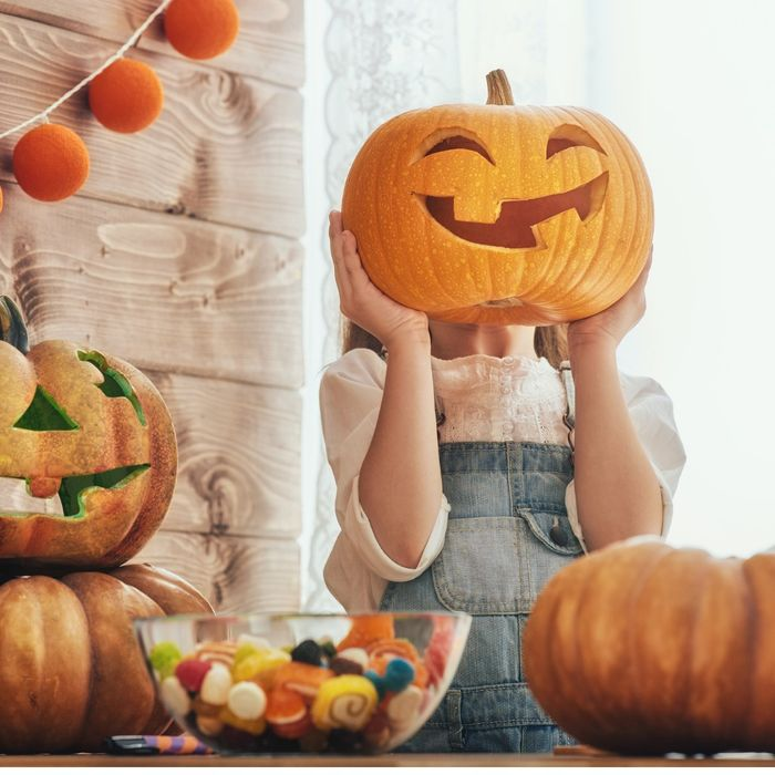Free October Workshop at Dobbies - We're Potty about Pumpkins