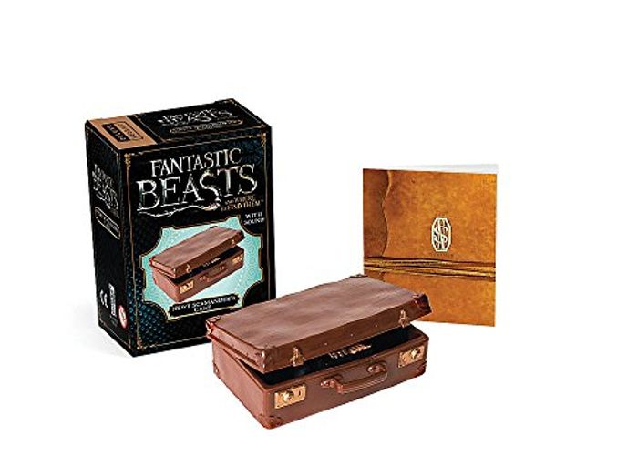 Fantastic Beasts and Where to Find Them: Newt Scamander's Case