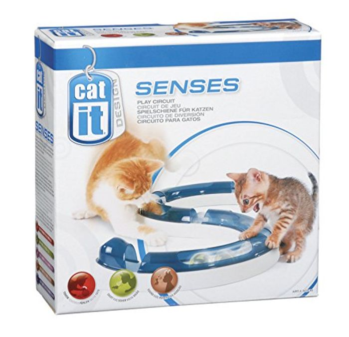 Cat Play Circuit