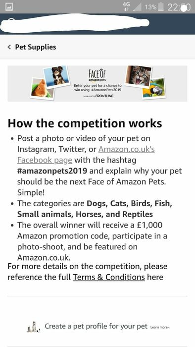 Dog Competition with Amazon