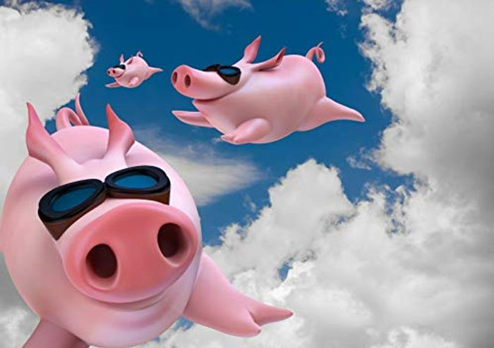 Best Price! Funny Flying Pigs Poster Size A4 Joke Secret Santa Cool Poster Gift