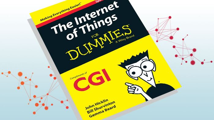 Free Hardcopy of Internet for Dummies