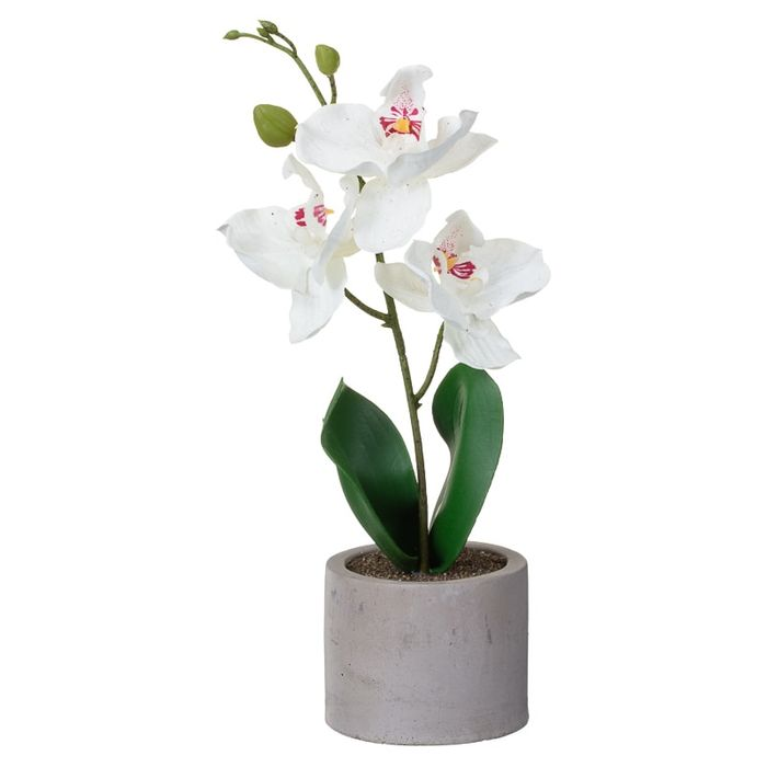 Artificial Orchid in round Pot