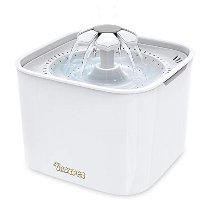 Best Price - Cat/Dog Water Fountain - 30% Off!