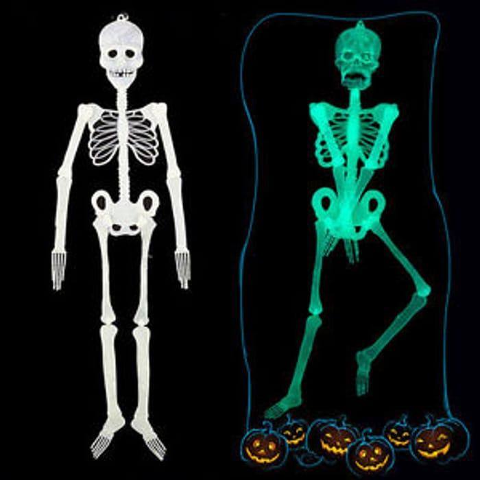 Luminous Glow in the Dark Skeleton For Halloween