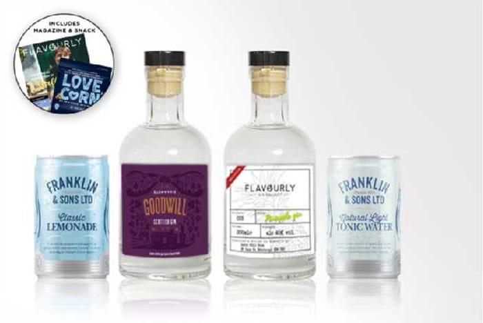 Gin Hamper for £11.99 on Wowcher