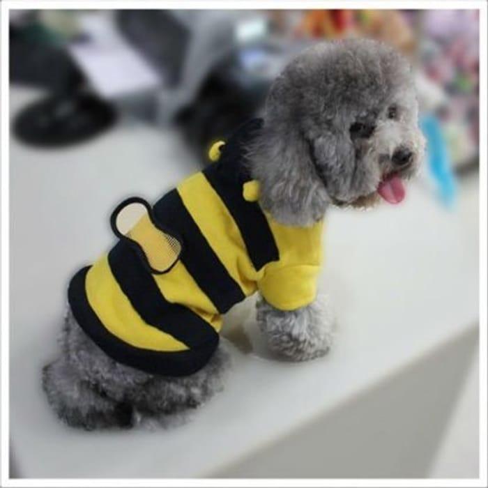 Little Dog Bee Jumper at Amazon