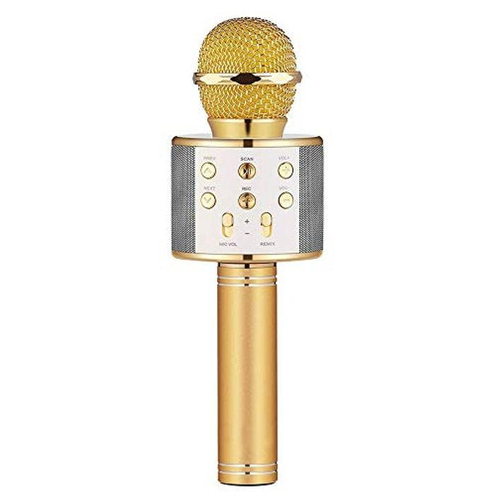 Best Ever Price! Bluetooth Karaoke Microphone for Kids