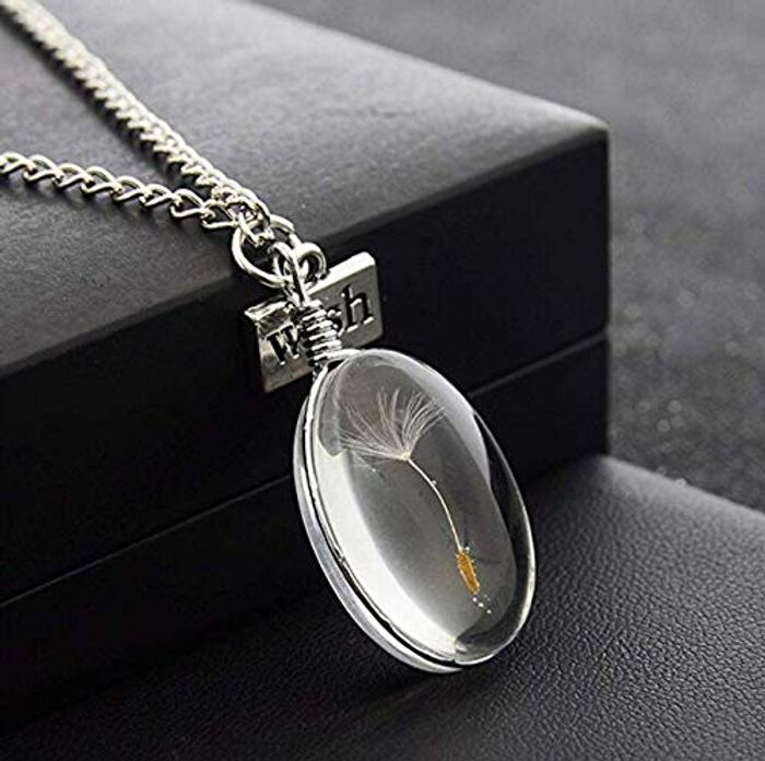 LnLyin Glass Bottle Natural Dandelion Seed in Glass Necklace FREE Delivery