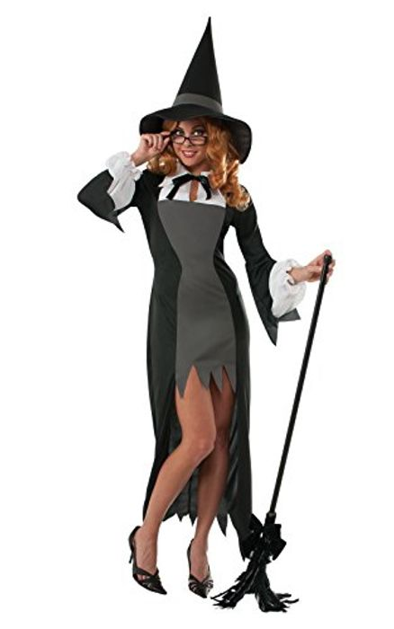 Women's Witch Fancy Dress Halloween Costume (Size Small) - Add-On