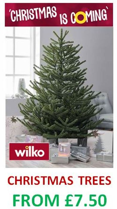 Best Price WILKO - Christmas Trees - at Wilko