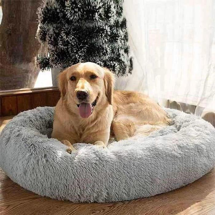 Win a Super Comfy Calming Fluffy Pet Bed!
