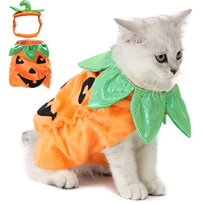 Up to 70% off Legendog Cat Halloween Costume,Cat Halloween Apparel Pumpkin