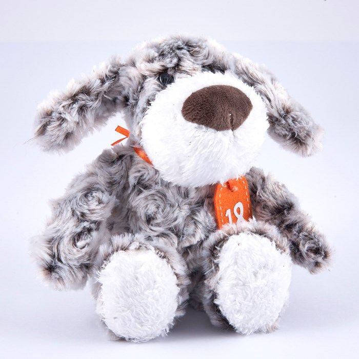 Birthday Teddies - Grey and White Dog in Gift Bag