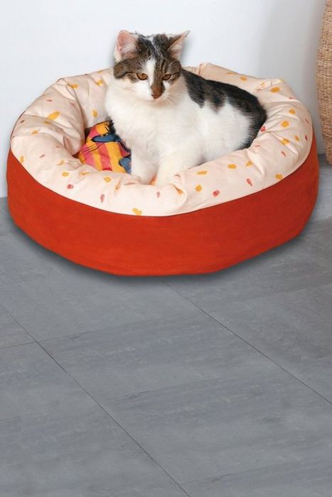 Printed Cat Bed - Treat Your Cat for Christmas