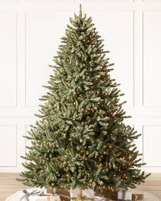 CANADIAN BLUE GREEN SPRUCE Was £299 Now £199
