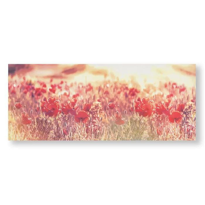 Peaceful Poppy Fields Printed Canvas