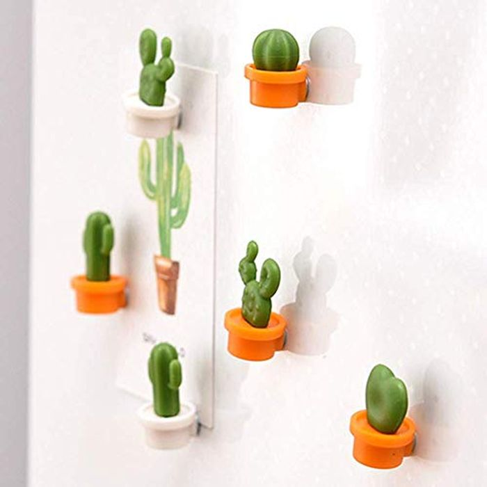 6pcs Cute Succulent Plant Magnets Set Only £2.60 with FREE DELIVERY