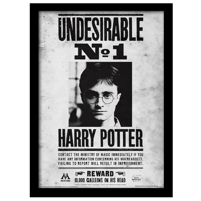 Harry Potter Undesirable no.1 Framed 30 X 40cm Print - Save £4.60 with Code!