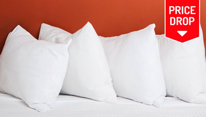 Luxury Goose Feather and Down Pillows - 2, 4 or 6 with 88% discount - Great buy!