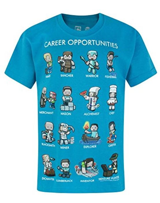 Minecraft T Shirt- Free Delivery