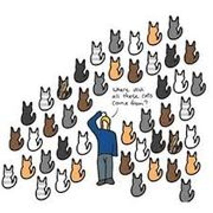 Free Cat Neutering Scheme