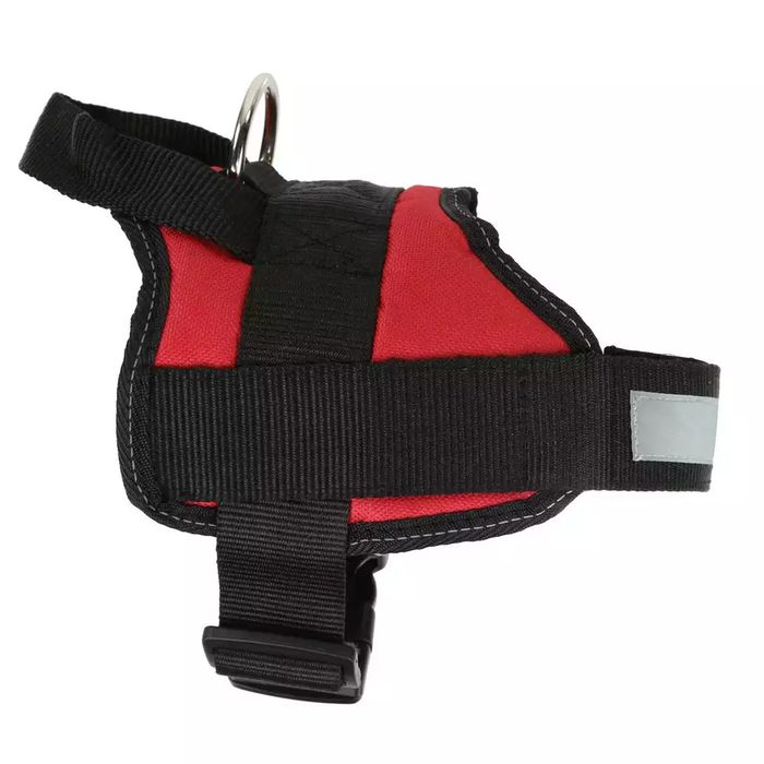 Cheap Regatta Reflective Dog Harness with 50% Discount - Great buy!