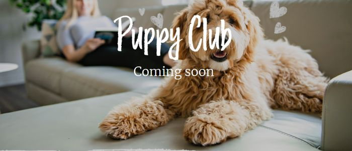 Pre-Register Now For The Burns Puppy Club! **UPDATE - TURNS OUT NOT TO BE FREE**