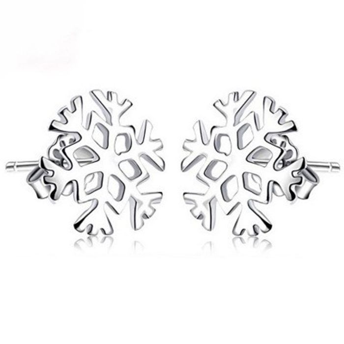 Free Silver Snowflake Earrings With Any Purchase! Plus 75% Off Everything!