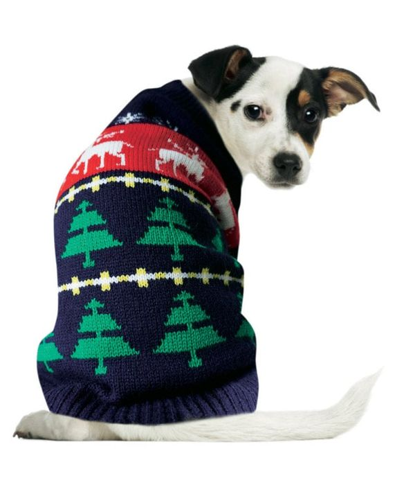 Christmas Dog Jumper on Sale From £15 to £7.5