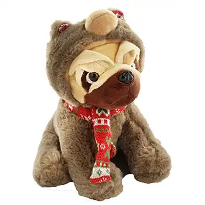 Bear Hooded Snuggly Pug Soft Toy