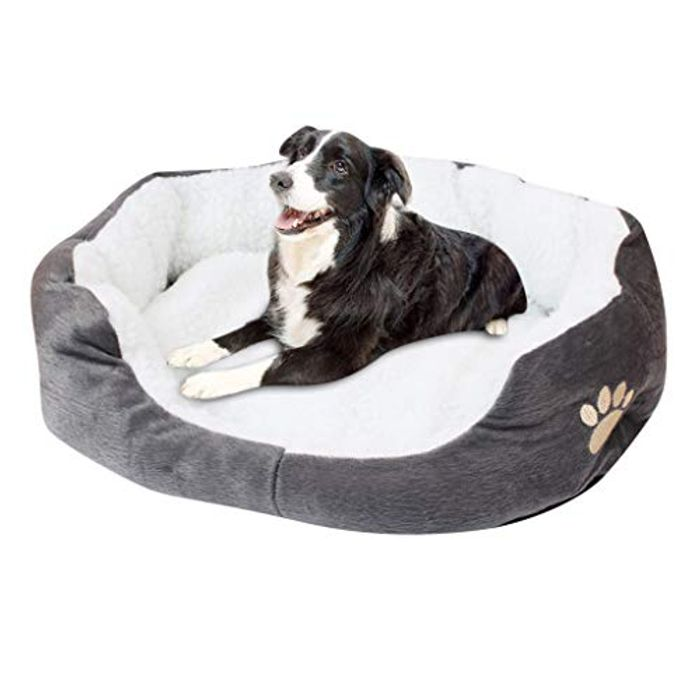 Pet Bed 70% off + Free Delivery