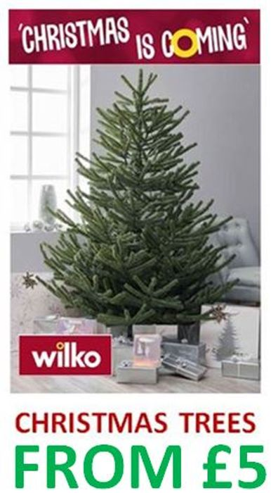 Special Offer - WILKO Christmas Trees - Deals from £5
