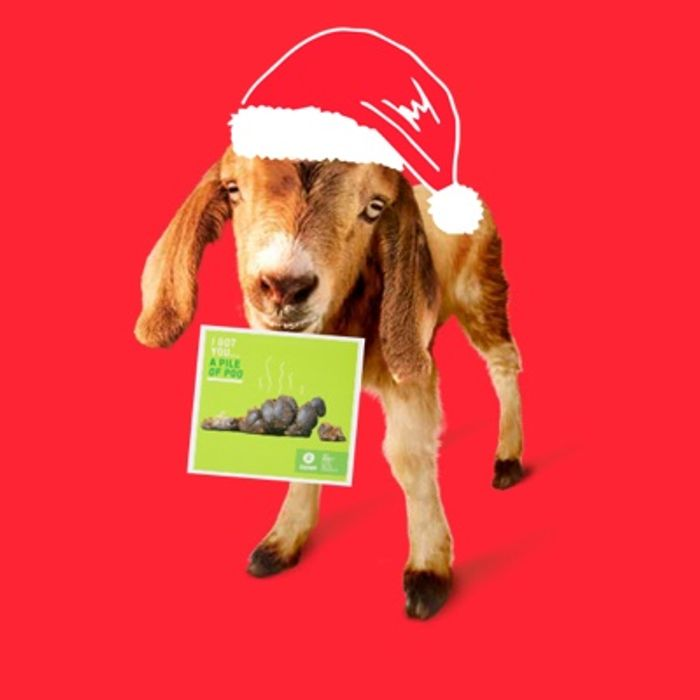 50% off Oxfam Charity Gift Cards