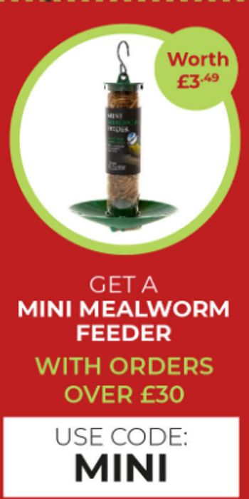 Get A Mini Mealworm Feeder Free With Orders Over £30