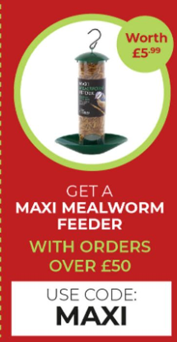 Get A Maxi Mealworm Feeder Free With Orders Over £50