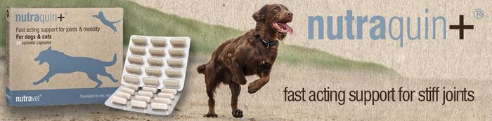 Free Nutraquin Dog Joint Supplement Trial Pack.