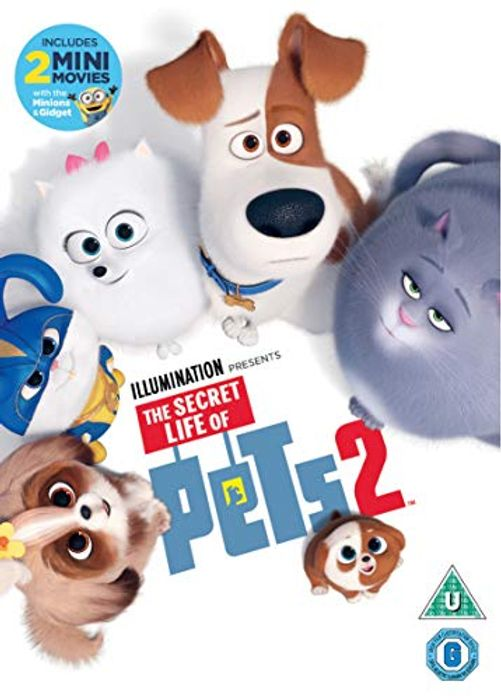 Best Price! The Secret Life of Pets 2 [DVD] [2019] Only £7 at Amazon
