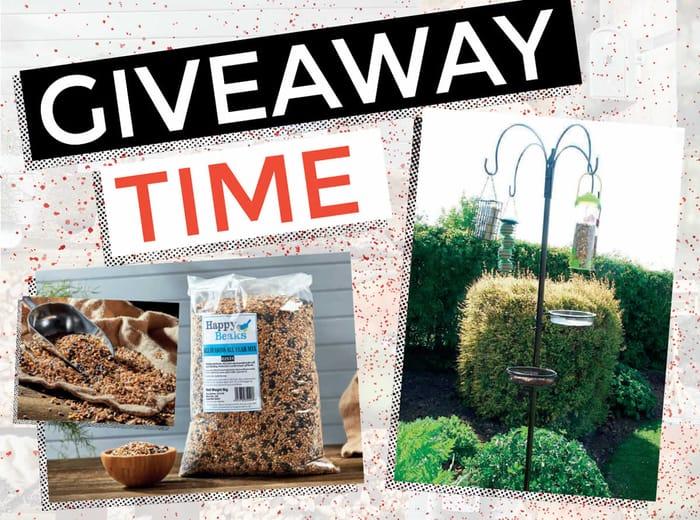 Win a Bird Feeding Station