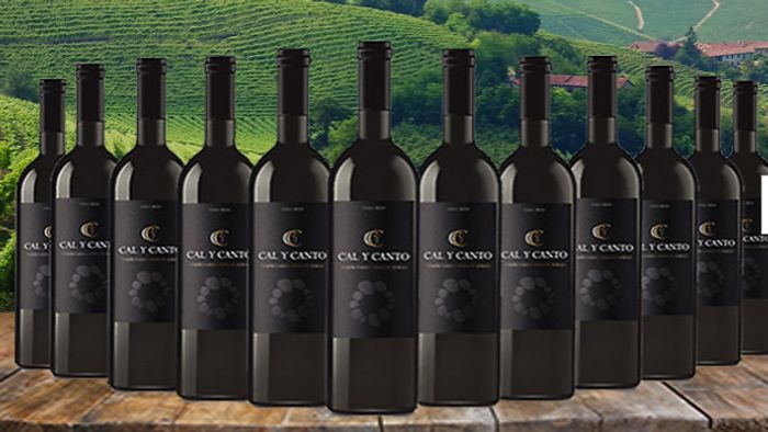 12 Bottles of Award-Winning Cal Y Canto Castilla Red Wine + EXTRA 10% Off