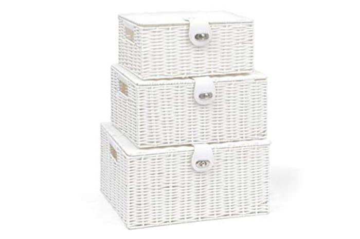 Arpan Set of 3 Resin Woven Storage Basket