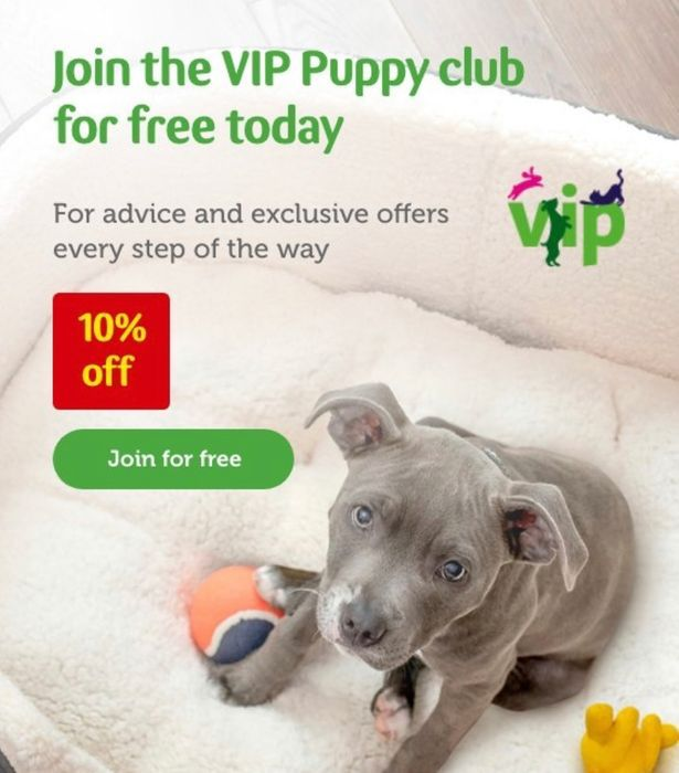 Free VIP Puppy Club Membership & Freebie Goodies.