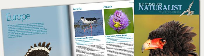 The Travelling Naturalist Brochure