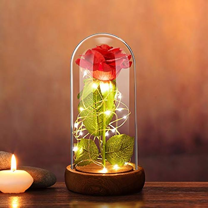 Forever Rose Flower with 20 LED Lights