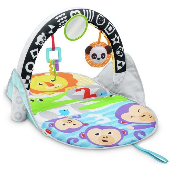 Fisher-Price Stow and Go Activity Gym